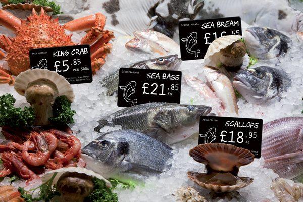 edkio-price-tag-for-fish